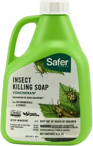 spray for plants to keep bugs away