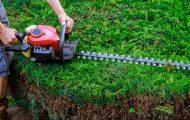 Best-Hedge-Trimmer